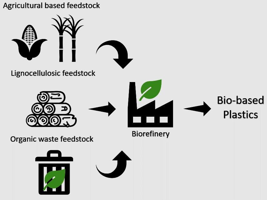 The figure illustrates the feedstocks' use into bio-based plastic production.